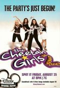 The Cheetah Girls 2 poster & wallpaper