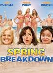 Spring Breakdown Poster