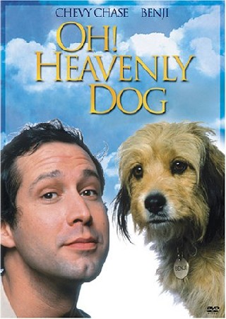 Oh Heavenly Dog