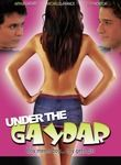 Under the Gaydar