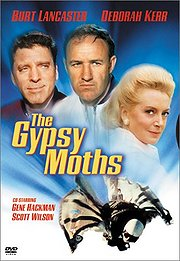 The Gypsy Moths Poster