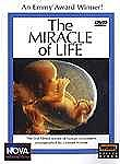 The Miracle of Life: Nova