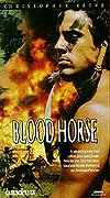 Blood Horse