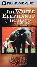 In the Wild - The White Elephants of Thailand with Meg Ryan