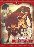 Karate Bullfighter